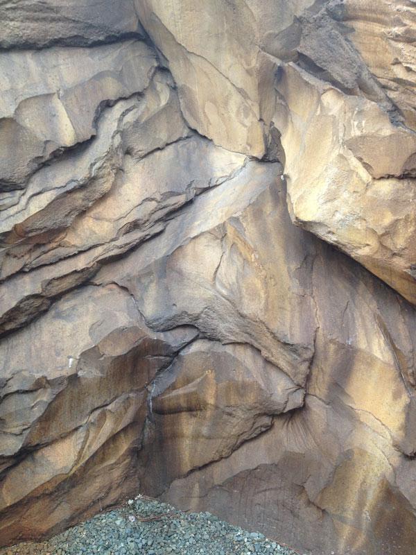 roca11